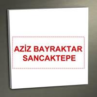Aziz Bayraktar Sancaktepe
