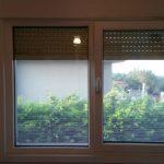 Pencere Sineklik Modeli